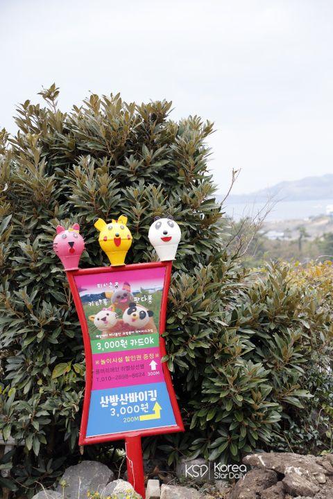 【济州岛景点】济州岛打卡热点 最可爱的兔子冰淇淋 章鱼鸡蛋糕