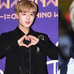 Wanna One朴志训粉丝集资向儿童医院捐款 纪念梦想实现出道100天