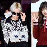 Super Junior金希澈 EXID Hani联手主持《一周偶像》