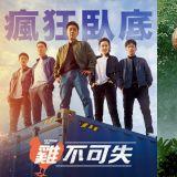 韓國電影《雞不可失》(極限職業)賣座到即將被好萊塢翻拍啦~!