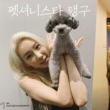 太妍與寵物犬一起出演真人秀《Petionista Taengoo》 今日播出特別篇!