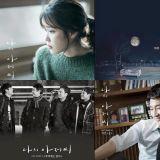 韩剧《我的大叔》每一首OST都触动著人心,而你最爱的又是哪一首呢~?