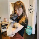 秋冬新品上市:太妍的愛犬ZERO與服飾品牌SPAO再度合作,推出全新冬季睡衣!