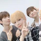 《PD X 101》Brand New Music 金施勲、洪誠俊、尹正煥組隊 10 月發行企劃單曲!