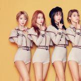 AOA終於要回歸啦! 6人組重新出發,有望5月發新歌