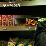 韓劇《夫妻的世界》離婚後兒子俊英心路歷程的變化...