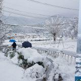 山火才熄又降大雪! 江原道連夜遭逢4月雪,山間一片白茫茫