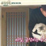 《一日三餐-渔村篇3》尹均相带著宠物猫登场 可爱萌样引发热议