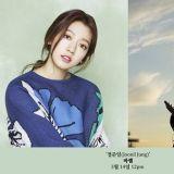 朴信惠将出演歌手郑俊日新曲MV 感性演技与温暖嗓音的相遇