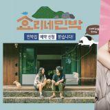 JTBC年末大總結! 綜藝&電視劇TOP 3,你喜歡的是否也在其中呢?