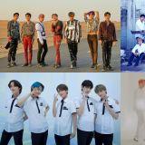 10月回归的男团! Super Junior & AB6IX & NU'EST都来啦~❤