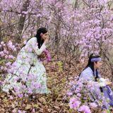 《王在相愛》浪漫劇照公開 滿山花朵不及三主角顏值