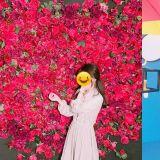 【仁川景點】超適合拍照! 仁川Instasia照相展覽館,在這裡留下你的人生美照吧~