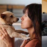 【多圖】善心天使!李孝利低調幫助差點成為流浪狗的七兄妹,夫妻倆擁抱寵物多張合照公開