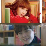 tvN《罗曼史是别册附录》公开主演单人海报!李钟硕追寻李奈映的眼神也太甜蜜了吧~