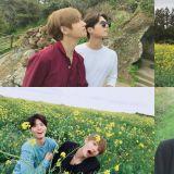 朴宝剑、BTS V同游济州岛…属於花美男们的友情!