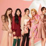 Mina 有望重启活动 2 月初出席 TWICE 发片纪念会!