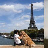 20代韓妞與愛犬一起世界旅行:「想帶它看更大的世界!」