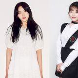 明星帝国旗下品牌推新女团 ARIAZ 半数成员曾参加选秀!