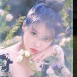 確定啦!IU 將攜迷你五輯〈Love Poem〉回歸