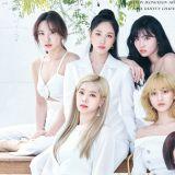 TWICE 9 月發行日語精選輯 首度收錄非主打歌!