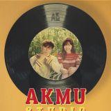 天然系兄妹组合-乐童音乐家AKMU海外处女秀首献台湾 200%音乐能量疗愈登台