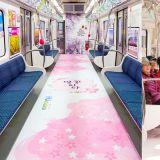 【期间限定】一年一度的樱花季将来临,釜山地铁3号线打造粉嫩的「樱花主题车厢」