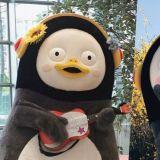 EBS超人氣企鵝Pengsoo將擔任MBC演藝大賞頒獎嘉賓