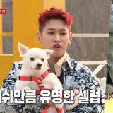 CRUSH的情歌《Woo Ah》竟是寫給愛犬! 網友翻出歌詞重看:「說得通耶! 」