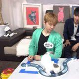 《我的小電視》FTIsland李洪基&崔鐘訓的貓播 在執事們的愛情裡告終
