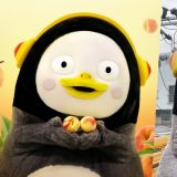 这只企鹅不简单!Pengsoo短短9个月赚进100亿,堪称「吸金狂鹅」
