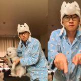 Crush 超自信挑战 Zico 的新歌《Any song》,后面的爱犬一脸嫌弃!XD