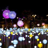 晚上去才更美! 京畿道星光庭院OOOZOOO,绝对可以拍出人生级美照!