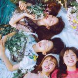 「樣貌相似藝人」演出將受限? 韓女性家族部發聲引爭議