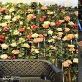弘大咖啡廳推薦 : 有好吃水果塔的花草咖啡廳