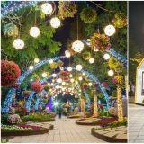 【京畿道.高阳】夜晚与白天一样美,星光熠熠的日山湖水公园, 4月27日登场!