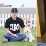 只要出現就成熱話的狗 EXO世勳愛犬VIVI變OIOI了?