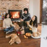 《孝利家民宿2》花絮照公開 冬日圍爐暖融融