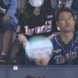 棒球場上的爆笑一幕!老婆在身邊你還敢明目張膽幫啦啦隊美女扇風?