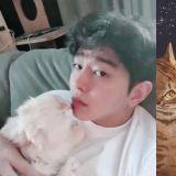 「猫奴」尹钧相怒回网友的无理请求:「当初为什么开始呢? 」