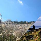 秋季就要遊濟州島!這些絕佳美景一定要打卡,連張東健夫婦都來過