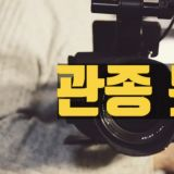 【K社韓文小百科】韓國網民真的管太多?明星頻繁曬照都會被罵「關種」ㅠㅠ