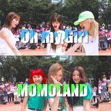 宇宙少女、OH MY GIRL、MOMOLAND、fromis_9合作翻跳BTS防弹少年团《Boy With Luv》