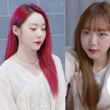 tvN女团主唱生存节目《V-1》参赛者名单公开!宇少延静、Weki Meki有情、Cherry Bullet海允等人都参赛!