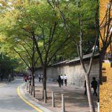 情侶們請注意!不想分手的話來韓國千萬別去這條街