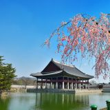 國家宴會場所景福宮的慶會樓:4月份開始開放參觀