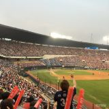 韩国棒球球季开打!来看场球赛吧~