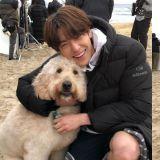 金宇彬與大狗狗燦笑合照 雙重迷人魅力來襲!