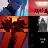 SF9公开首张迷你专辑主打歌《ROAR》MV 独特群舞突显存在感