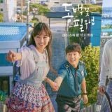 《山茶花开时》获得韩国放送大赏3大奖项:最佳作品、演员、编剧